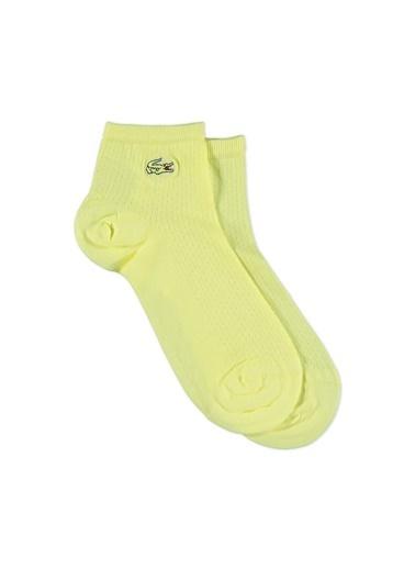 Lacoste Çorap Renkli